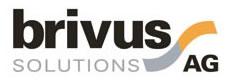 Brivus Solution AG